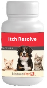 Itch Resolve (Cool Itch) - 100 Capsules